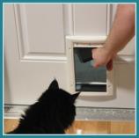 Pet door in Schenectady home's garage door