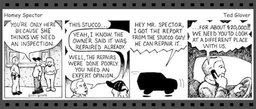 Stucco inspection comic strip, Delmar Home Inspection