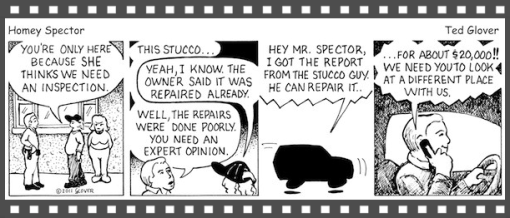 Stucco inspection comic strip, Delmar Home Inspection