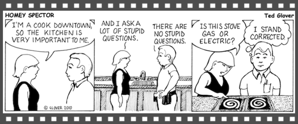 HouseAbout Home Inspections comic strip, Schenectady home inspections